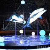 イルカのオブジェ