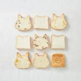 ねこねこ食パン イオンモール堺鉄砲町店