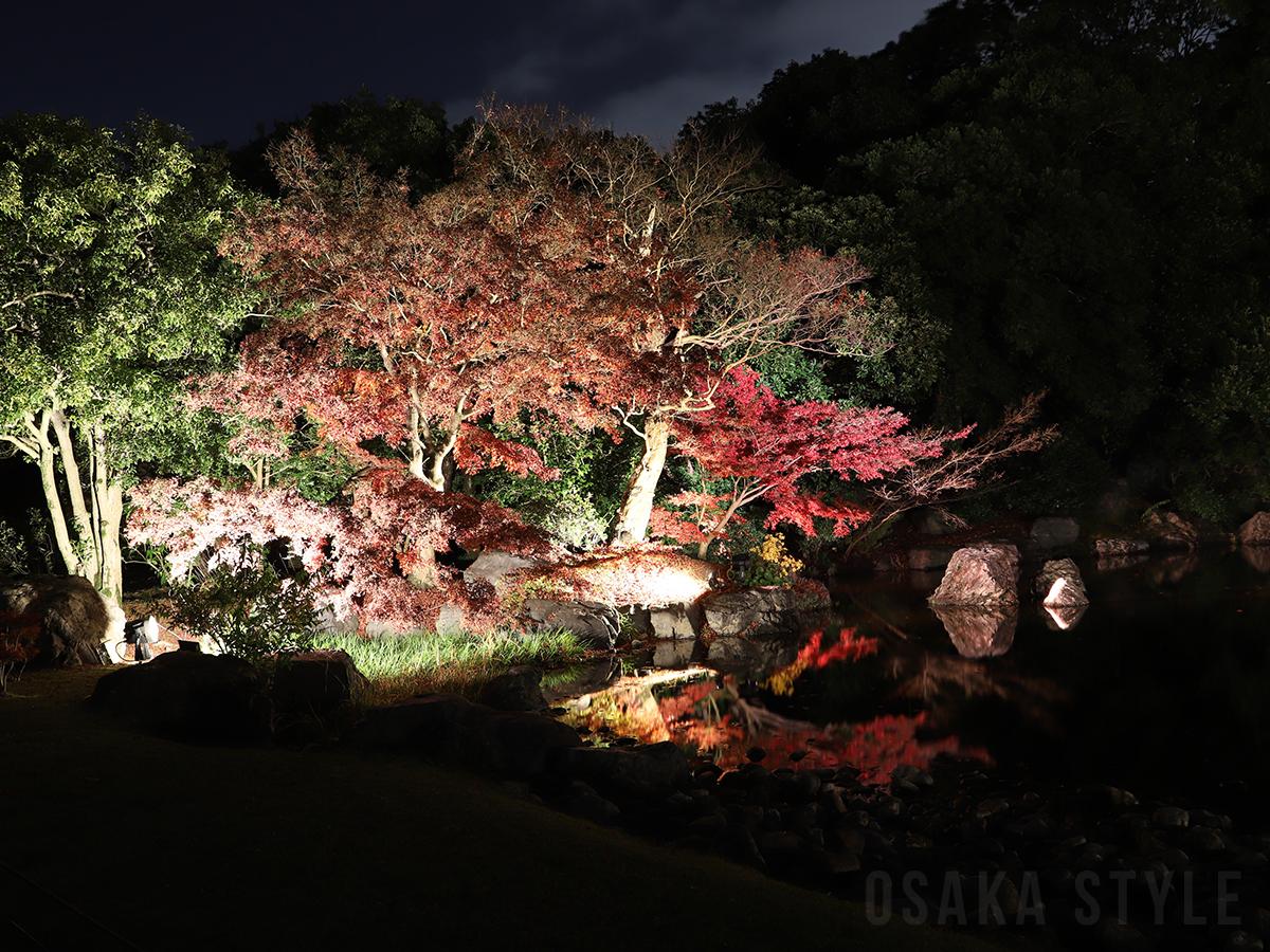 日本庭園の夜間ライトアップ